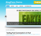 Free WordPress Theme - Froster