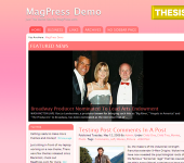 Free WordPress Theme - Pinkvisor
