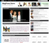 Free Magazine WordPress Theme - Bizine