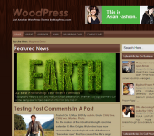 Free WordPress Theme - WoodPress